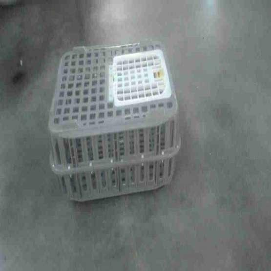 فروش قفس حمل مرغ زنده،قفس پلاستیکی، سبد کشتارگاهی،سبد بسته بندی
