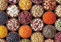 صادرات به کشور پاکستان