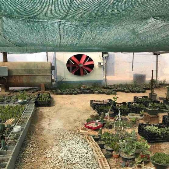 کولرهای آبی سرماسان گلخانه و مرغداری