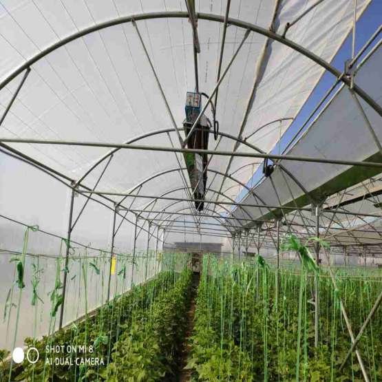 گرماتاب سقفی گلخانه